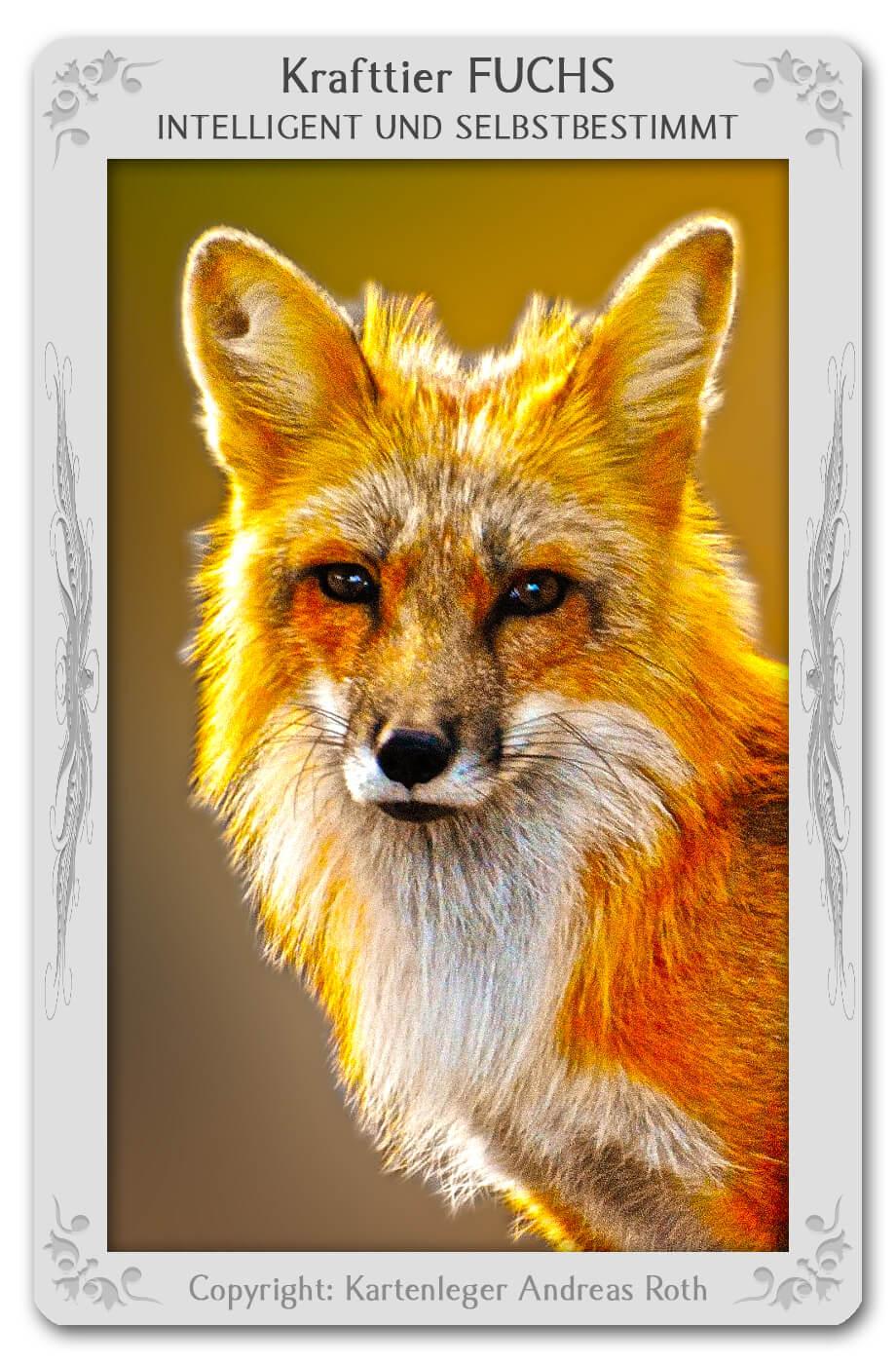 Krafttier Fuchs: Bedeutung & Eigenschaften