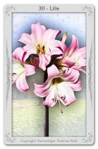 lenormand karte die lilie